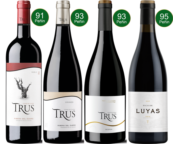 Spanien - Bodegas Trus - The Collection (4x 0,75L)